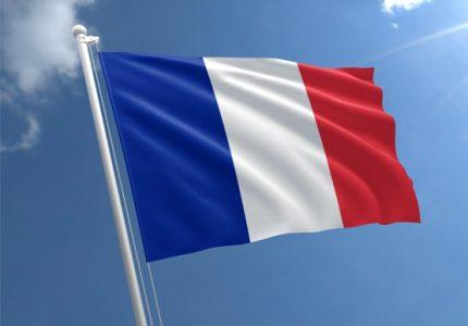 Fransızca Tercüme Hizmeti