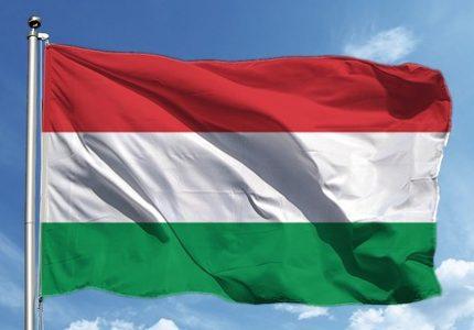 Macarca Çeviri Hizmeti