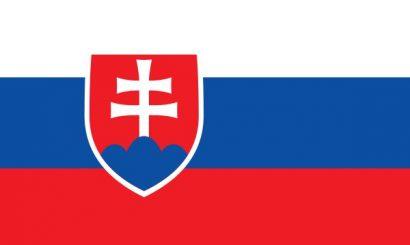 Slovence Tercüme Hizmeti