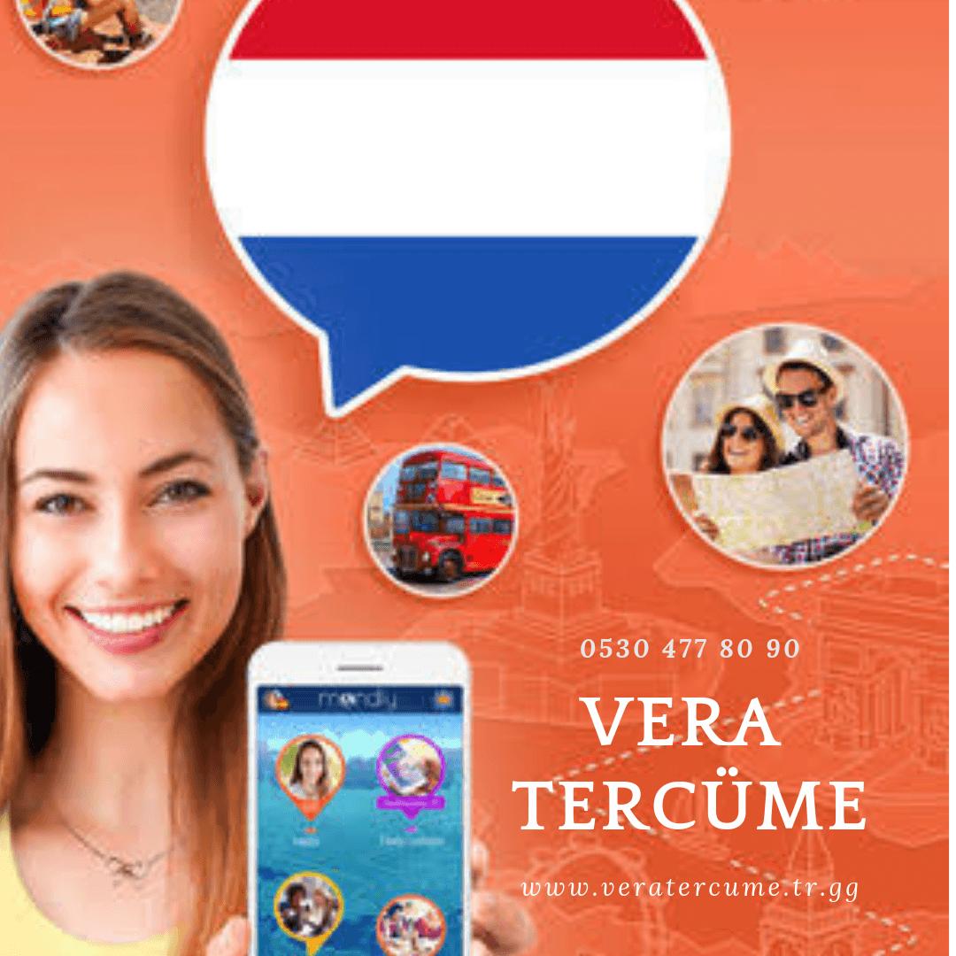 Felemenkçe (Hollandaca) Tercüme Hizmeti