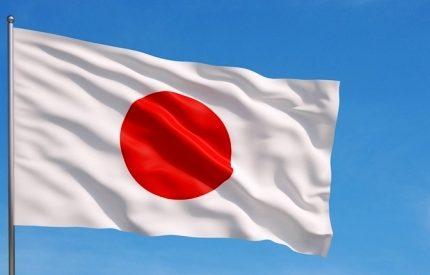 Japonca Tercüme Hizmeti