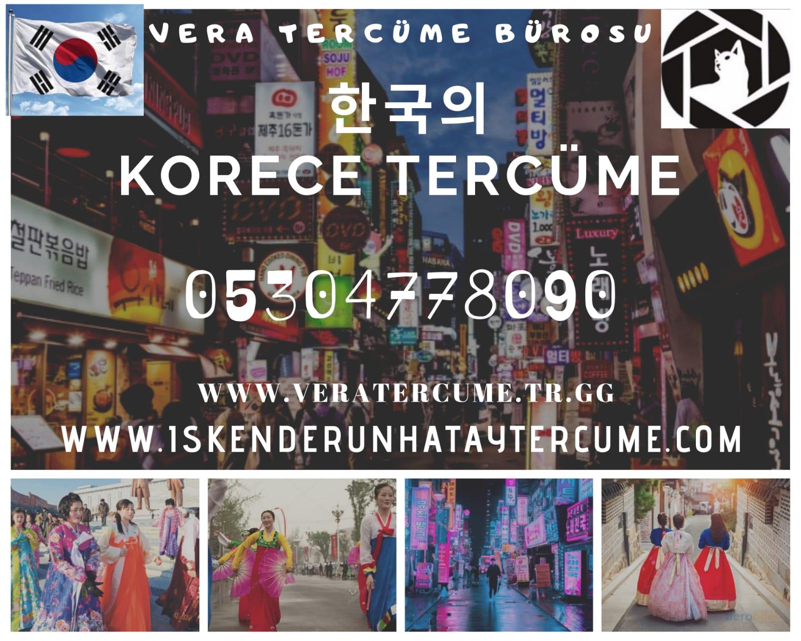 Korece Tercüme Hizmetleri