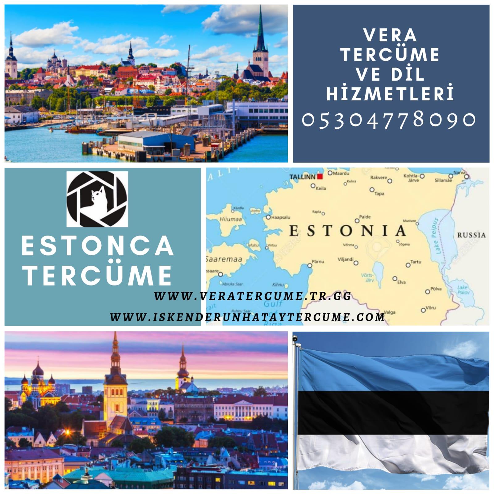 Estonca Tercüme Hizmeti