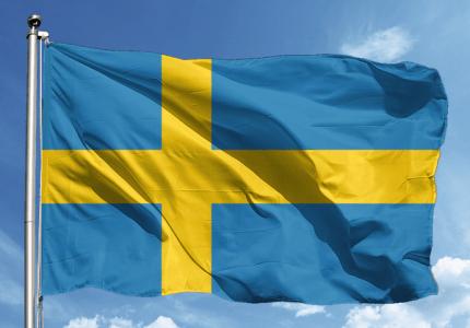 İsveççe Tercüme Hizmeti