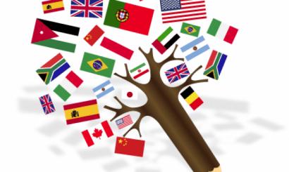 Onaylı Çeviri Hangi Amaçlar İçin Ele Alınır?