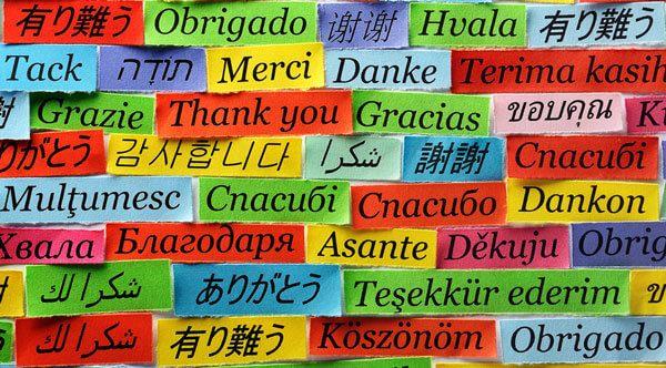 En İyi Tercüme Bürosu Hangisidir